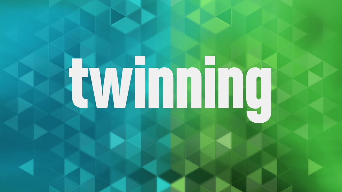 banner-twin